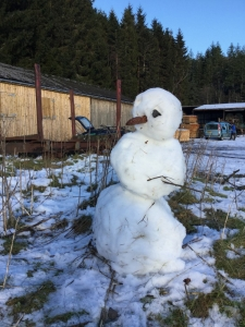 Snowman at Craig a' Barns February 2016, Alice Nicoll