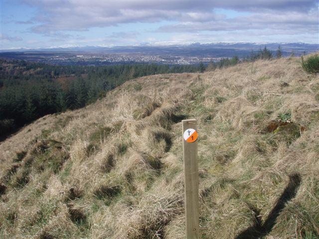Open moorland on Murrayshall Hill